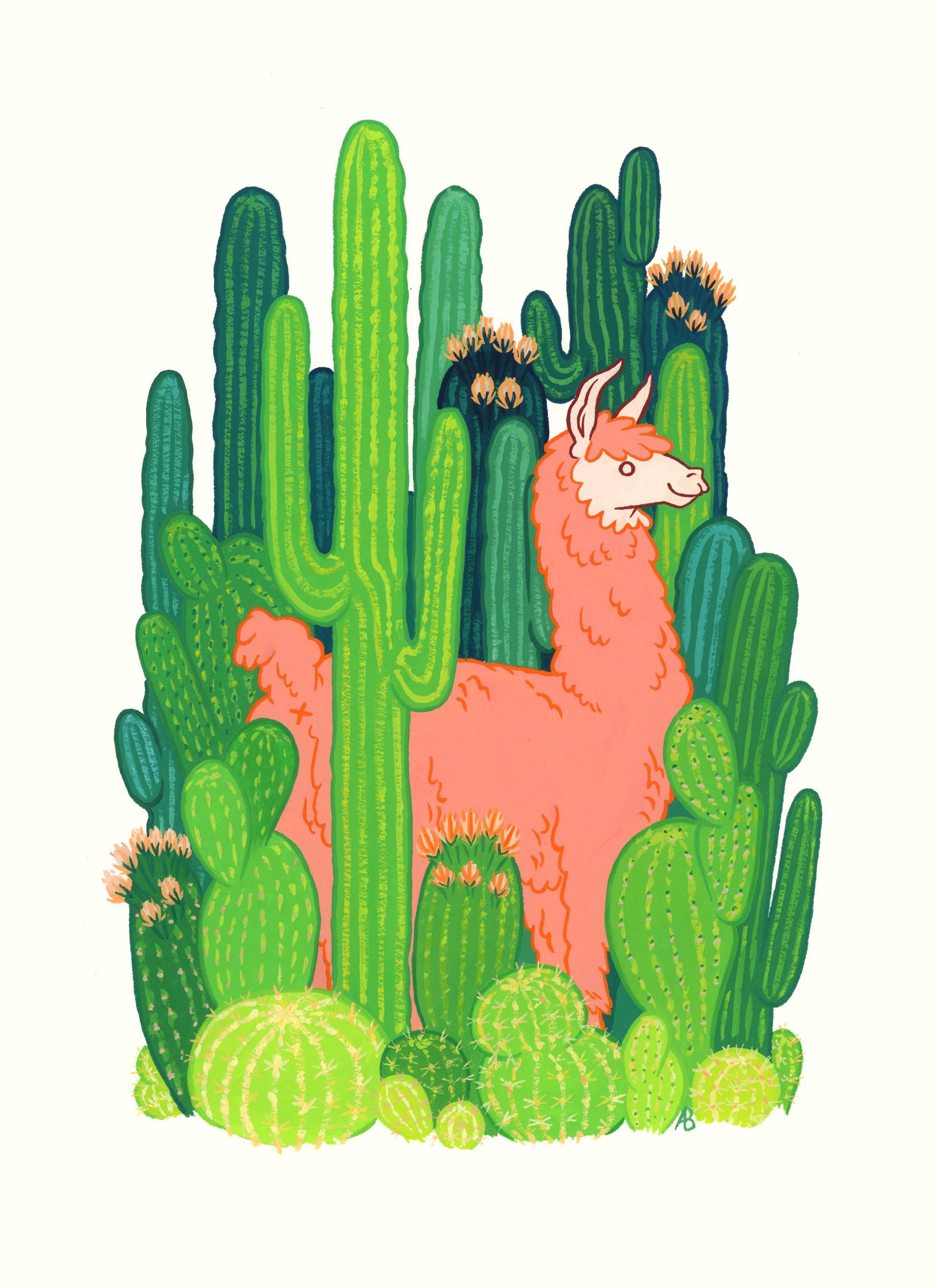 cactus-island