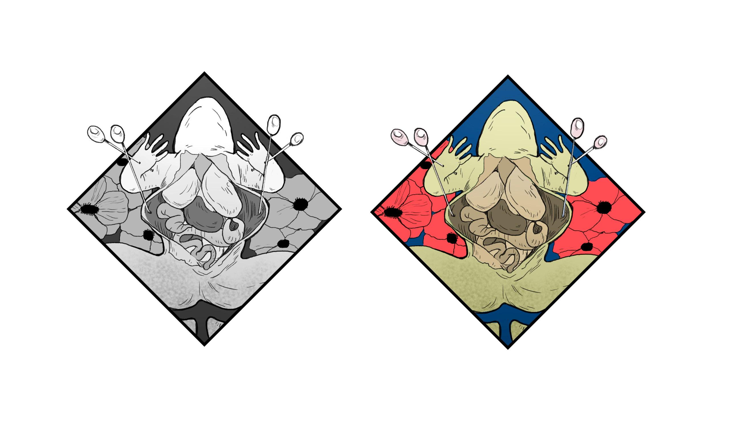 HHS-diamonds