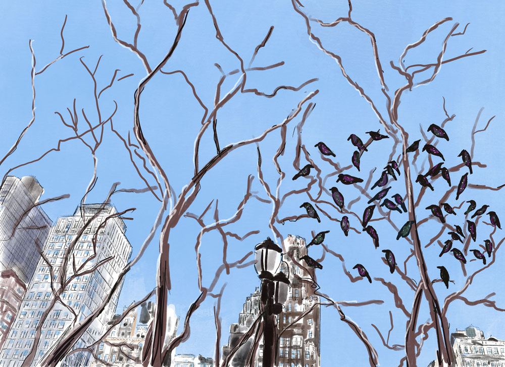 Illustration of city buildings and bare trees, one of which with many black birds perched on it, against a blue sky.