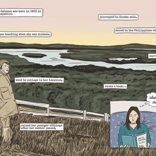 Sarah Shaw illustration of heroine looking over vast forested horizon